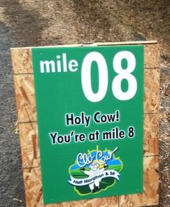 mile8
